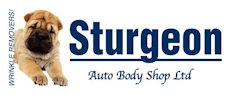 Sturgeon Auto Body Shop logo